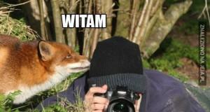 Fotografu, co robisz?
