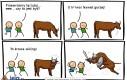 Groźne zwierzę hodowlane