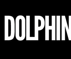 Delfiny gwałciciele