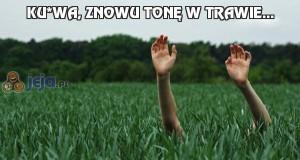 Ku*wa, znowu tonę w trawie...