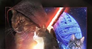 Gwiezdne Koteły