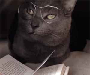 Przecież ja, ku*wa, nie umiem czytać...