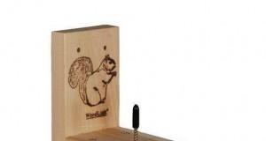 Stołówka dla wiewiórek