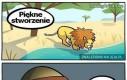 Polowanie na lwa