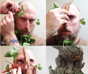 Udało się, jestem Drzewcem?