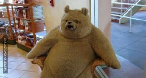 Ted się trochę zapuścił...