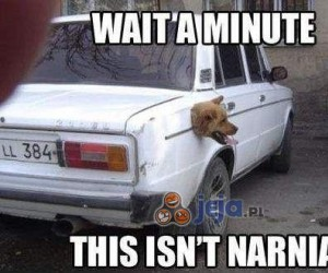 Chwileczkę... to nie Narnia!