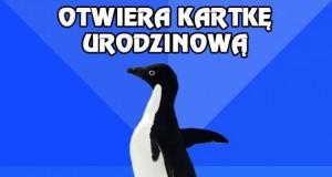 Aspołeczny pingwin i urodziny