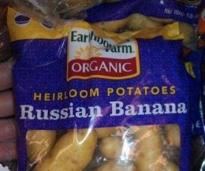 Rosyjskie banany