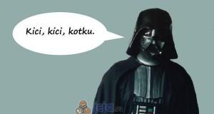 Vader i jego kotek