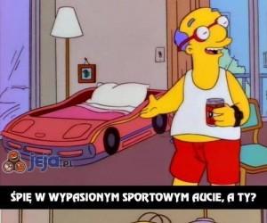 Bezbłędny Homer