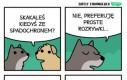 Co lubią psy