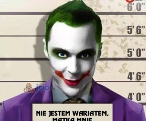 Cały Sheldon...