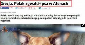 Polak zgwałcił psa w Atenach...