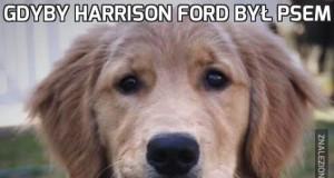Gdyby Harrison Ford był psem