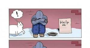 Pomocny koteł