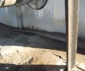 Kabel wyglądający jak wąż