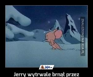 Jerry wytrwale brnął przez zaśnieżony wygwizdów