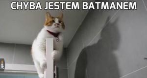 Chyba jestem Batmanem