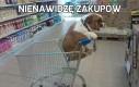 Nienawidzę zakupów