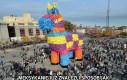Koń meksykański
