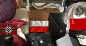 1939 oczami Polski
