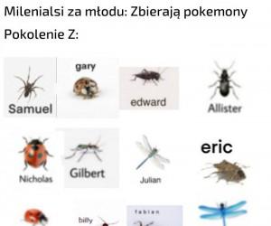 Śmieszne owady z imionami