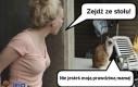 Kłótnia z kotem