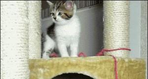 Kiedy zagapię się schodząc po schodach