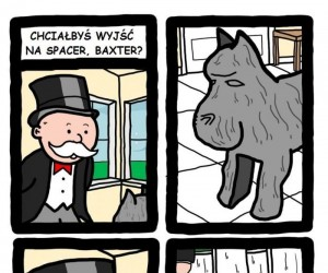 Pies Baxter
