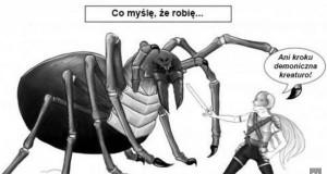 Niesamowita walka z pająkiem