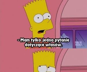 Problemy egzystencjalne Simpsonów