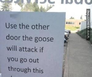 Proszę użyć innych drzwi