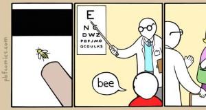 Ale to naprawdę pszczoła!