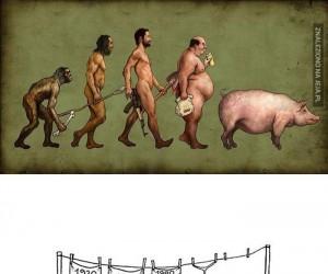 Och, ewolucjo...