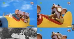"""Dywizjon """"Bracia Koala"""""""