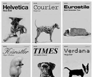 Czcionki jako psy