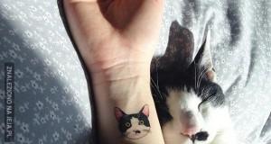 Tatuaże dla kociarzy