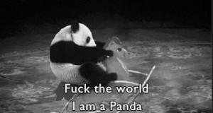 Walić świat! Jestem pandą!