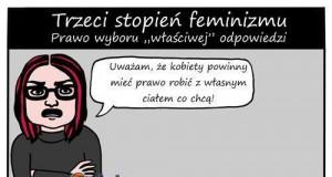 Trzeci stopień feminizmu