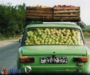Mistrzowie załadunku - jabłka
