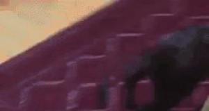 Kiedy skacowany schodzę po schodach