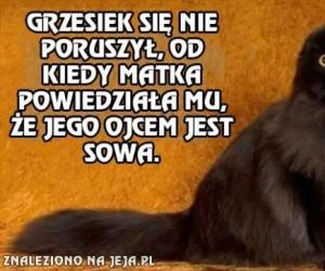 Grzesiek - Syn sowy