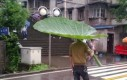 Biodegradowalny parasol
