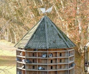 Pałac dla ptaków