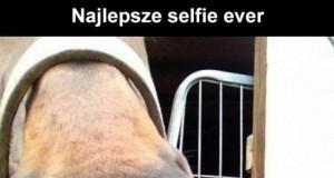 Artystyczne selfie