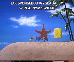 Jak Spongebob wyglądałby w realnym świecie