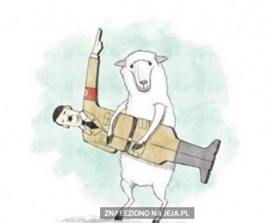 Owca taka zła