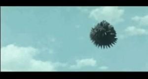 Godzilla Championships