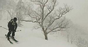 Zimowa przygoda